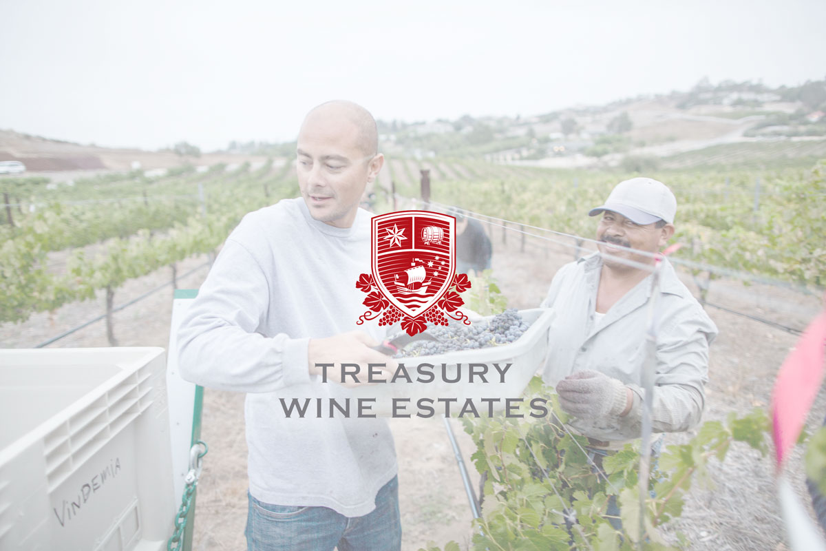 Treasury Wine Estates gains visibility across contracted labour workforce with CheckWorkRights